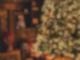 Antenne MV Weihnachtsbaum